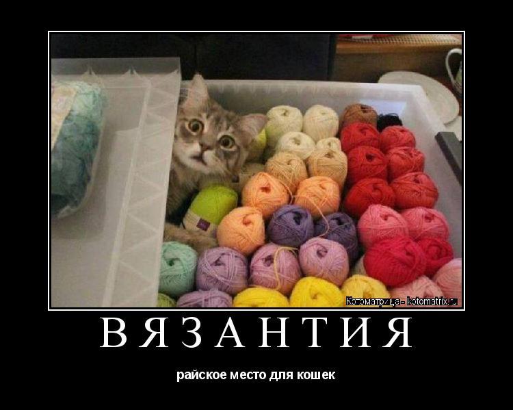 Котоматрица: ВЯЗАНТИЯ райское место для кошек