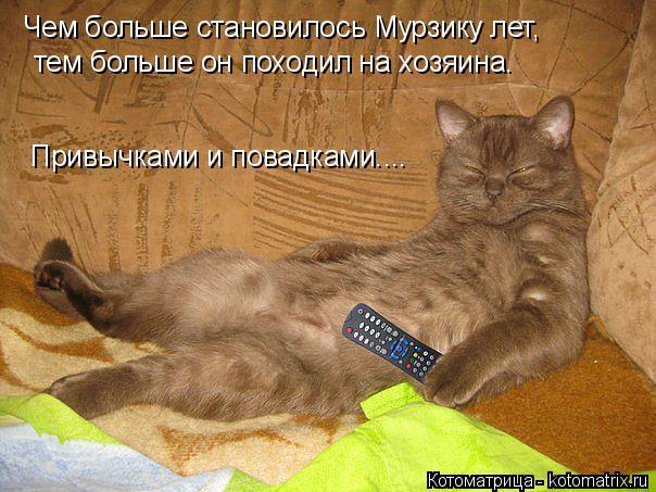 Котоматрица: Чем больше становилось Мурзику лет, тем больше он походил на хозяина. Привычками и повадками....