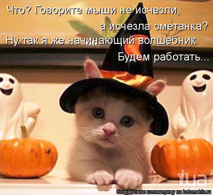 Котоматрица: Что? Говорите мыши не исчезли, а исчезла сметанка? Ну так я же начинающий волшебник Будем работать...