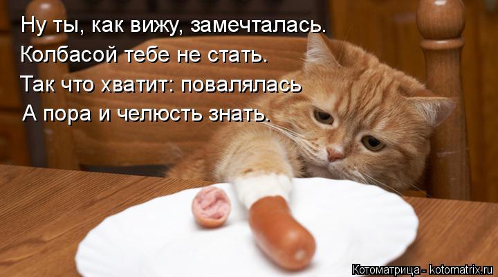 Котоматрица: Колбасой тебе не стать. Так что хватит: повалялась А пора и челюсть знать. Ну ты, как вижу, замечталась.