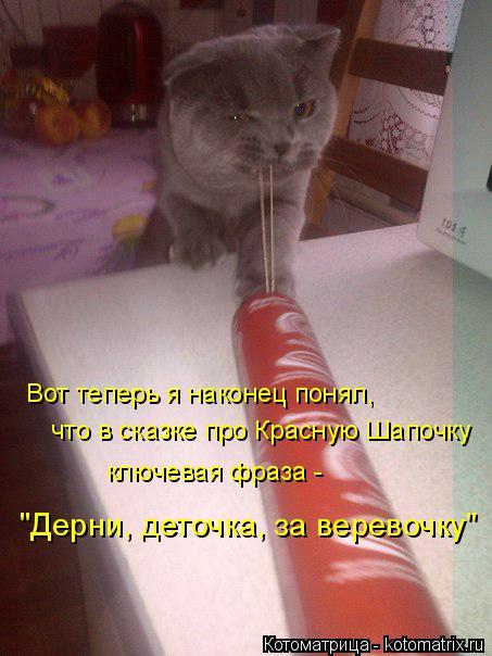 """Котоматрица: Вот теперь я наконец понял, что в сказке про Красную Шапочку ключевая фраза -  """"Дерни, деточка, за веревочку"""""""