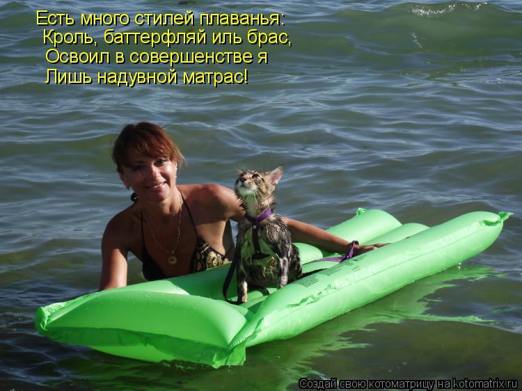 Котоматрица: Есть много стилей плаванья: Кроль, баттерфляй иль брас,  Освоил в совершенстве я Лишь надувной матрас!