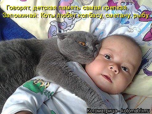Котоматрица: Запоминай: Коты любят колбасу, сметану, рыбу... Говорят, детская память самая крепкая.