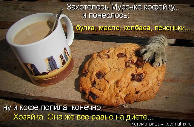 Котоматрица: и понеслось: булка, масло, колбаса, печеньки...  Захотелось Мурочке кофейку...  ну и кофе попила, конечно! Хозяйка. Она же все равно на диете...