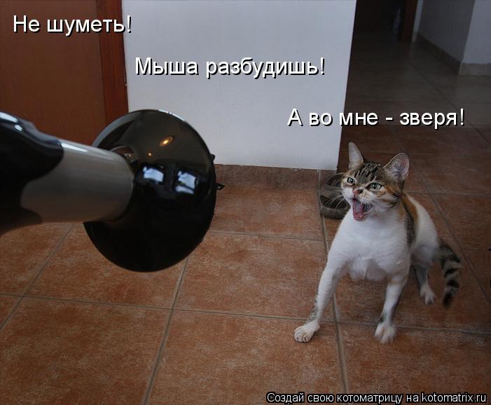Котоматрица: Не шуметь! Мыша разбудишь! А во мне - зверя!