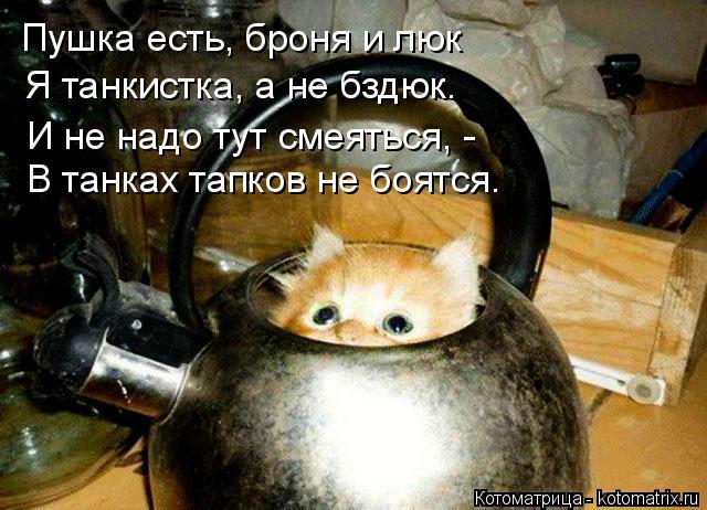 Котоматрица: Пушка есть, броня и люк Я танкистка, а не бздюк. В танках тапков не боятся. И не надо тут смеяться, -