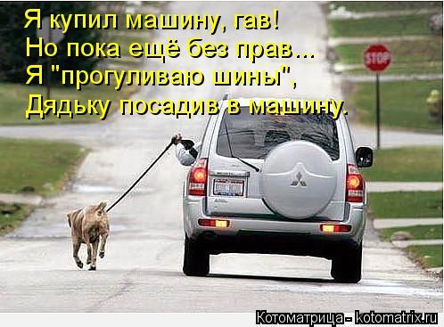 """Котоматрица: Но пока ещё без прав... Я купил машину, гав!  Я """"прогуливаю шины"""", Дядьку посадив в машину."""