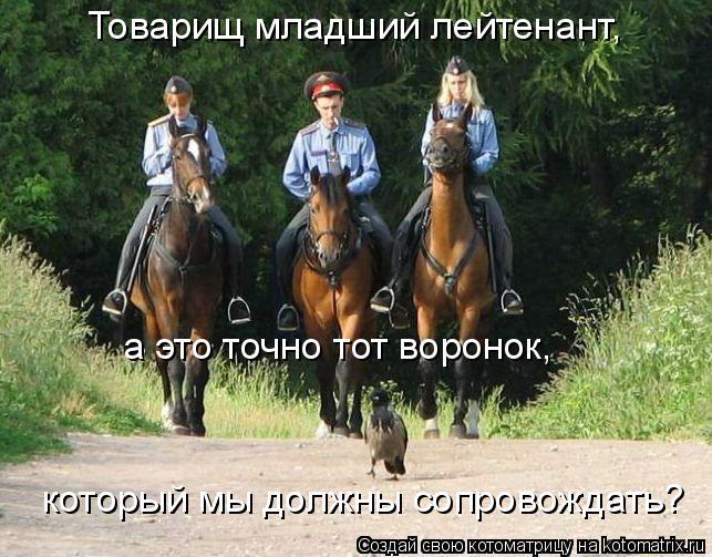 Котоматрица: Товарищ младший лейтенант,  а это точно тот воронок,  который мы должны сопровождать?