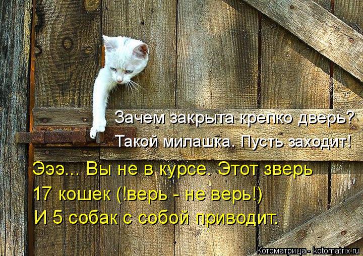 Котоматрица: Зачем закрыта крепко дверь? Эээ... Вы не в курсе. Этот зверь 17 кошек (!верь - не верь!) И 5 собак с собой приводит. Такой милашка. Пусть заходит!