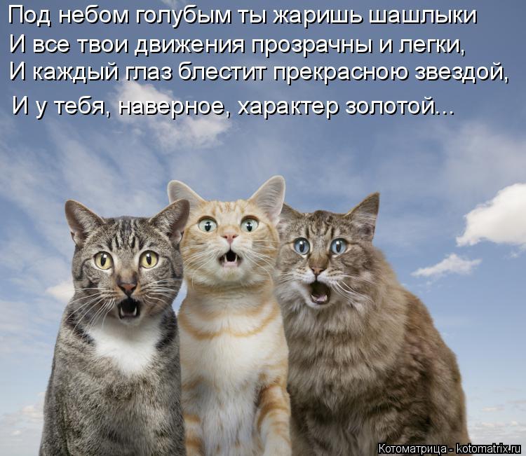 Котоматрица: Под небом голубым ты жаришь шашлыки И все твои движения прозрачны и легки, И у тебя, наверное, характер золотой... И каждый глаз блестит прекр