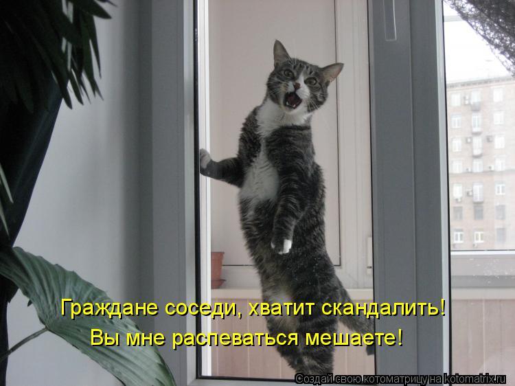Котоматрица: Граждане соседи, хватит скандалить! Вы мне распеваться мешаете!