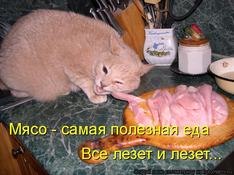 Котоматрица: Мясо - самая полезная еда Все лезет и лезет...