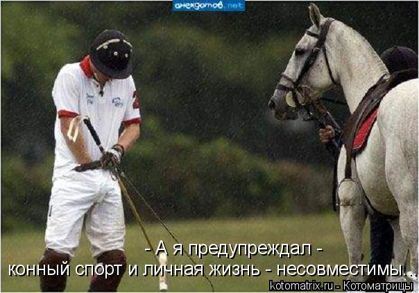 Котоматрица: конный спорт и личная жизнь - несовместимы... - А я предупреждал -