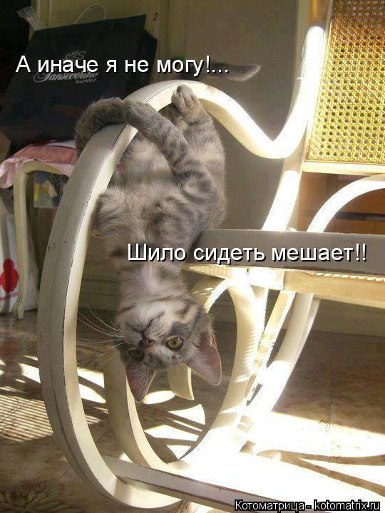 Котоматрица: А иначе я не могу!... Шило сидеть мешает!!