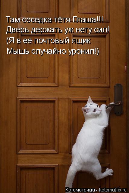 Котоматрица: Там соседка тётя Глаша!!! Дверь держать уж нету сил! (Я в её почтовый ящик Мышь случайно уронил!)
