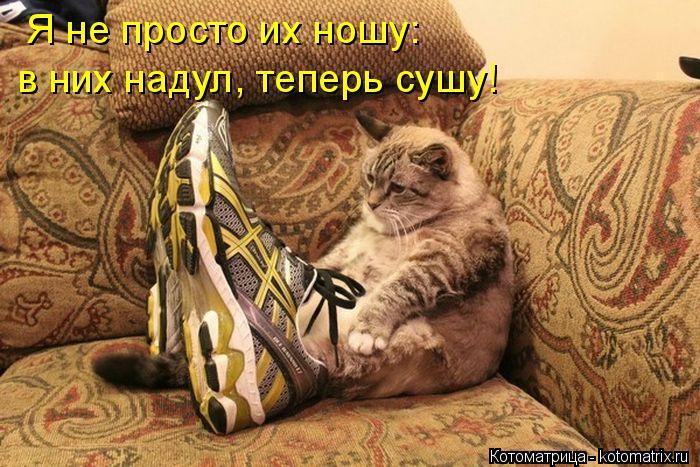Котоматрица: Я не просто их ношу: в них надул, теперь сушу!