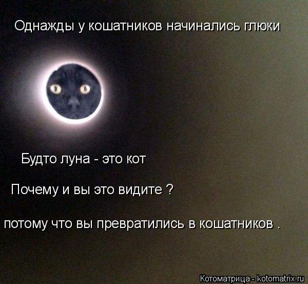 Котоматрица: Однажды у кошатников начинались глюки Будто луна - это кот  Почему и вы это видите ? потому что вы превратились в кошатников .