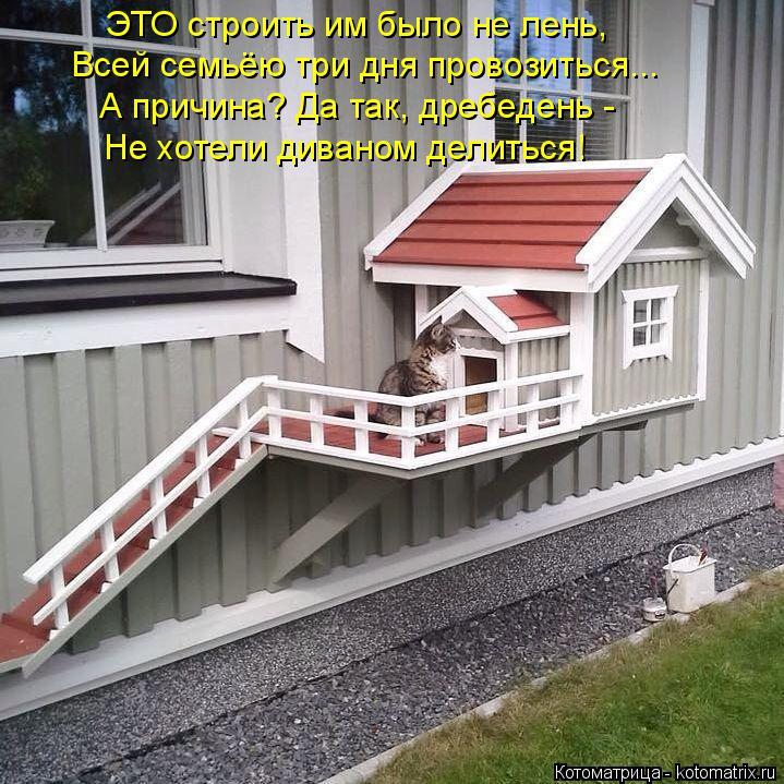 Котоматрица: ЭТО строить им было не лень, Всей семьёю три дня провозиться... А причина? Да так, дребедень -  Не хотели диваном делиться!