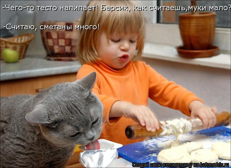 Котоматрица: -Чего-то тесто налипает! Барсик, как считаешь,муки мало? -Считаю, сметаны много!