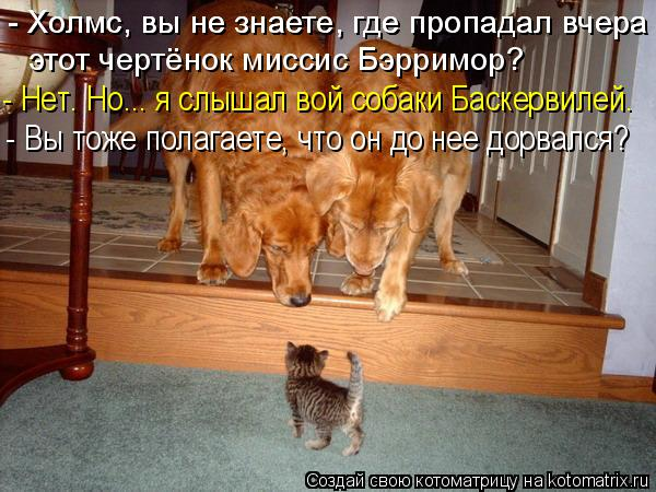 Котоматрица: - Холмс, вы не знаете, где пропадал вчера - Холмс, вы не знаете, где пропадал вчера - Нет. Но... я слышал вой собаки Баскервилей. - Вы тоже полагае