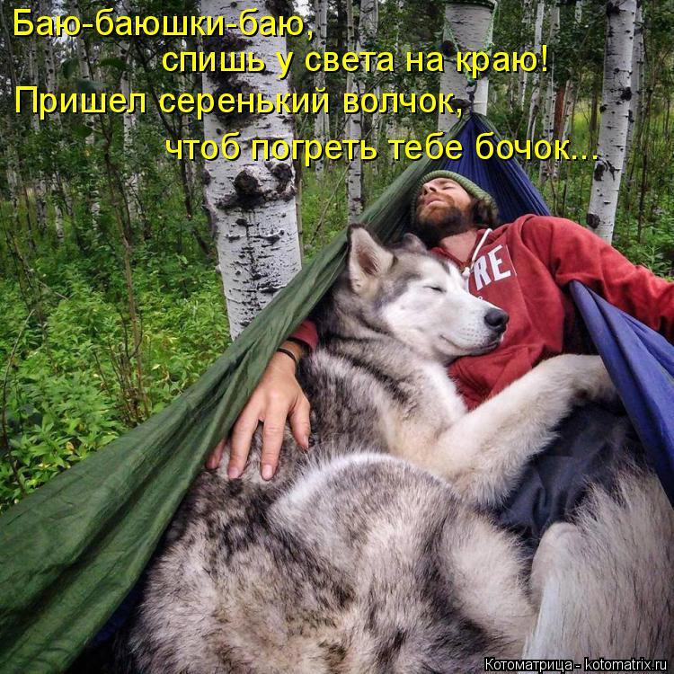 Котоматрица: Баю-баюшки-баю,  спишь у света на краю! Пришел серенький волчок, чтоб погреть тебе бочок...