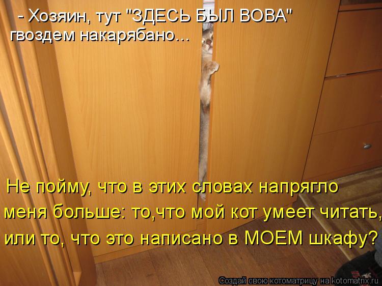 Котоматрица: гвоздем накарябано... Не пойму, что в этих словах напрягло меня больше: то,что мой кот умеет читать, или то, что это написано в МОЕМ шкафу? - Хоз
