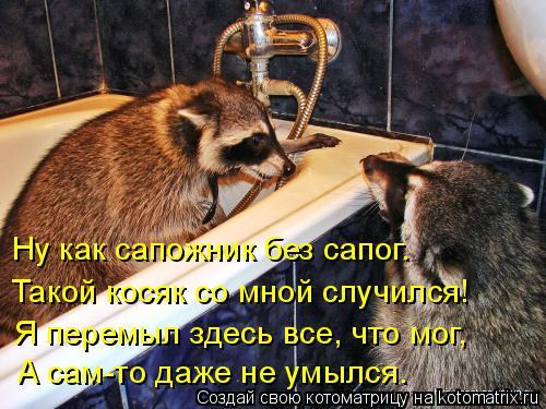 Котоматрица: Ну как сапожник без сапог. Такой косяк со мной случился! Я перемыл здесь все, что мог, А сам-то даже не умылся.
