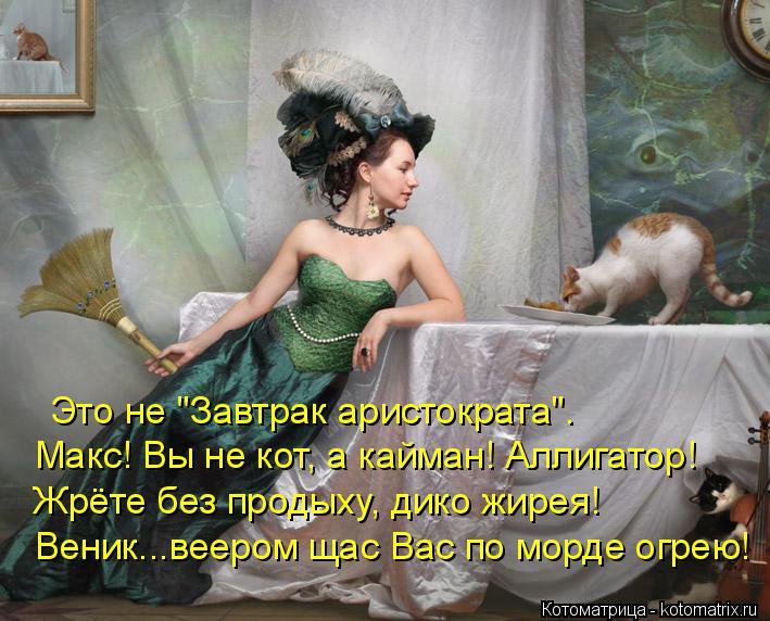"""Котоматрица: Это не """"Завтрак аристократа"""". Макс! Вы не кот, а кайман! Аллигатор! Жрёте без продыху, дико жирея! Веник...веером щас Вас по морде огрею!"""