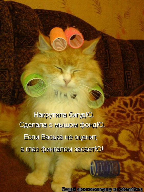 http://kotomatrix.ru/images/lolz/2015/08/18/kotomatritsa_Km.jpg