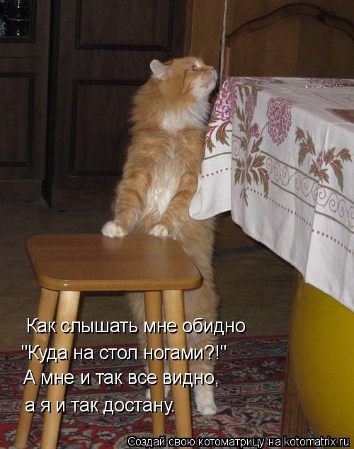 """Котоматрица: А мне и так все видно,   а я и так достану. """"Куда на стол ногами?!"""" Как слышать мне обидно"""