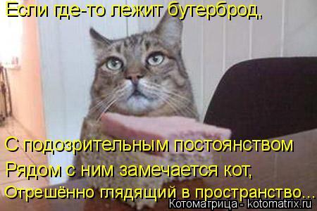 Котоматрица: Если где-то лежит бутерброд, С подозрительным постоянством  Рядом с ним замечается кот, Отрешённо глядящий в пространство...