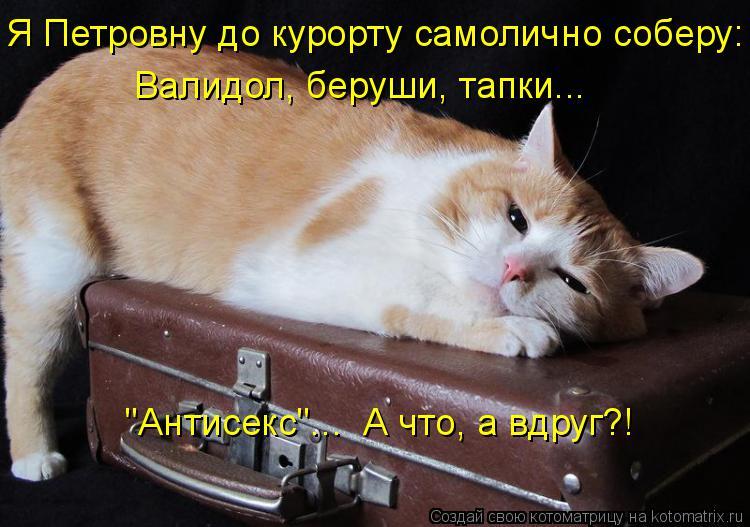 "Котоматрица: Я Петровну до курорту самолично соберу: Валидол, беруши, тапки... ""Антисекс""...  А что, а вдруг?!"