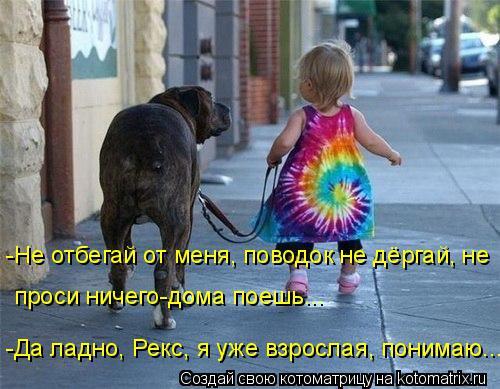 http://kotomatrix.ru/images/lolz/2015/08/28/kotomatritsa_qt.jpg