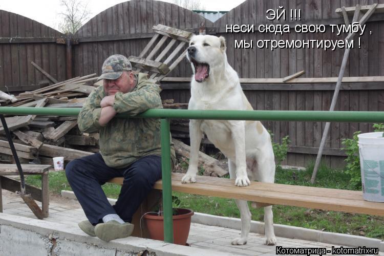 Котоматрица: ЭЙ !!! неси сюда свою тумбу , мы отремонтируем !