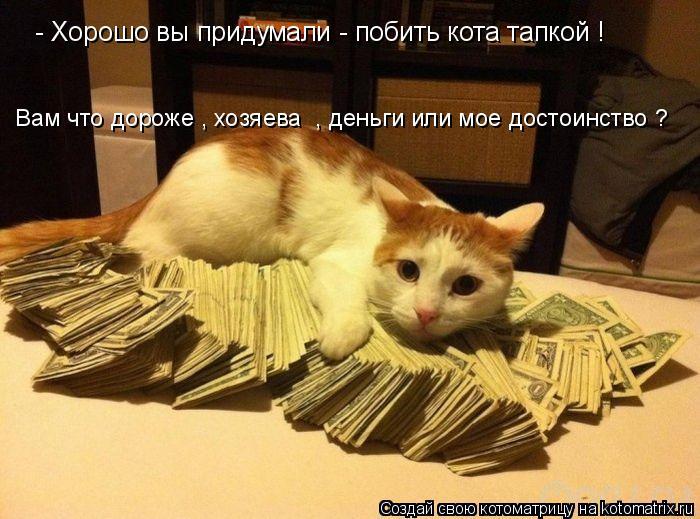 Котоматрица: - Хорошо вы придумали - побить кота тапкой ! Вам что дороже , хозяева  , деньги или мое достоинство ?