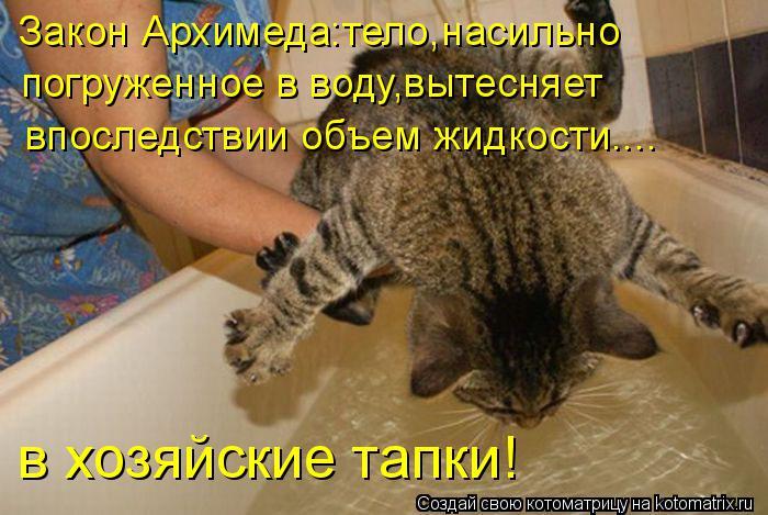 Котоматрица: Закон Архимеда:тело,насильно  погруженное в воду,вытесняет  впоследствии объем жидкости.... в хозяйские тапки!