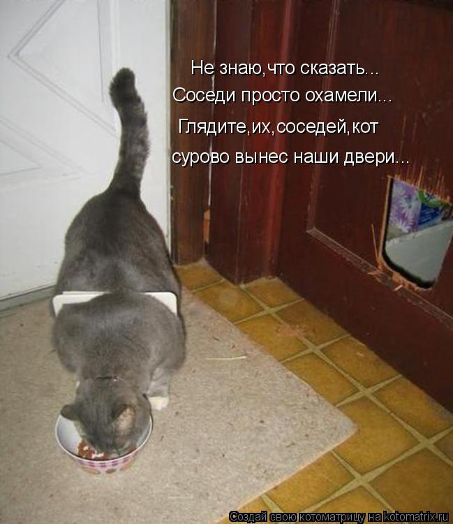 Котоматрица: Не знаю,что сказать... Соседи просто охамели... Глядите,их,соседей,кот сурово вынес наши двери...