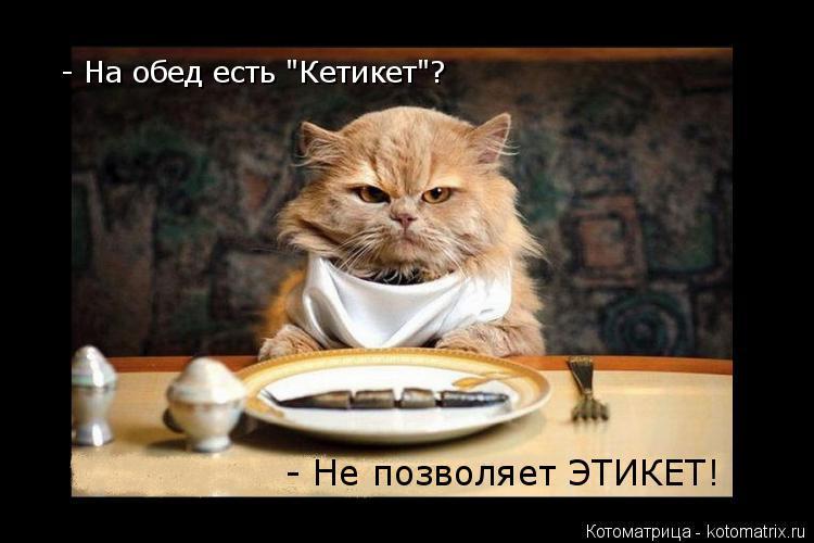 """Котоматрица: - На обед есть """"Кетикет""""? - Не позволяет ЭТИКЕТ!"""