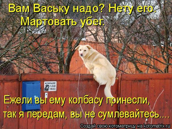 Котоматрица: Вам Ваську надо? Нету его. Мартовать убег. Ежели вы ему колбасу принес Ежели вы ему колбасу принесли, так я передам, вы не сумлевайтесь....
