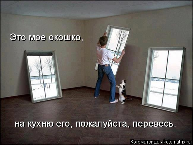 Котоматрица: Это мое окошко, на кухню его, пожалуйста, перевесь.