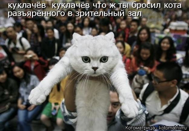 Котоматрица: куклачёв  куклачёв что ж ты бросил кота разъярённого в зрительный зал