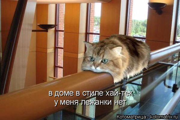 Котоматрица: в доме в стиле хай-тек у меня лежанки нет..