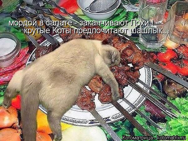 Котоматрица: мордой в салате - заканчивают Лохи ! крутые Коты предпочитают шашлык...