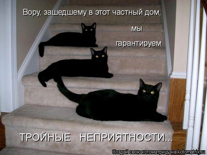 Котоматрица: Вору, зашедшему в этот частный дом,  мы гарантируем ТРОЙНЫЕ   НЕПРИЯТНОСТИ...