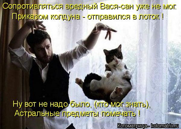 Котоматрица: Сопротивляться вредный Вася-сан уже не мог. Приказом колдуна - отправился в лоток ! Ну вот не надо было, (кто мог знать), Астральные предметы п