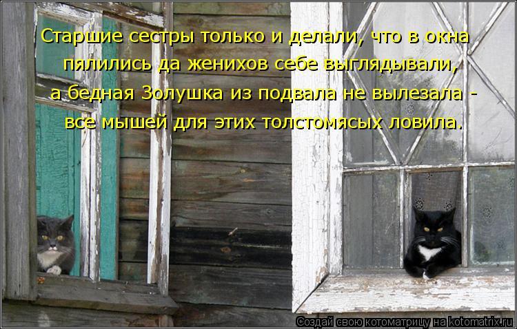 Котоматрица: Старшие сестры только и делали, что в окна  пялились да женихов себе выглядывали, а бедная Золушка из подвала не вылезала - все мышей для эти