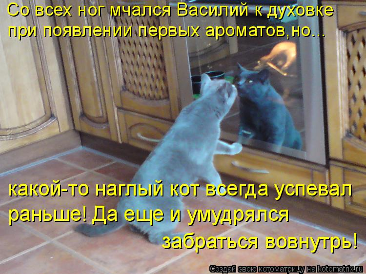 Котоматрица: Со всех ног мчался Василий к духовке  при появлении первых ароматов,но... какой-то наглый кот всегда успевал раньше! Да еще и умудрялся забра