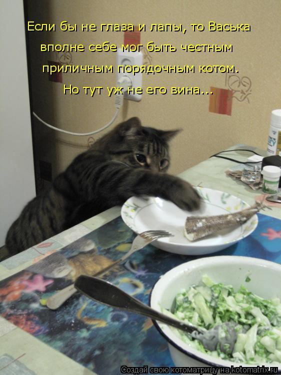 Котоматрица: Если бы не глаза и лапы, то Васька приличным порядочным котом. Но тут уж не его вина... вполне себе мог быть честным
