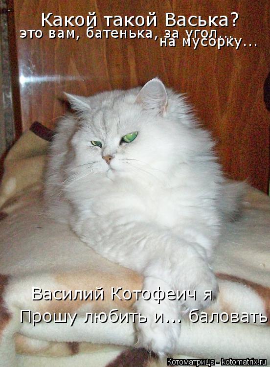 Котоматрица: Какой такой Васька? это вам, батенька, за угол... на мусорку... Василий Котофеич я Прошу любить и... баловать