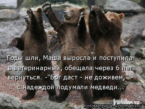 """Котоматрица: Годы шли, Маша выросла и поступила в ветеринарный, обещала через 6 лет с надеждой подумали медведи... вернуться. -""""Бог даст - не доживем,"""" -"""